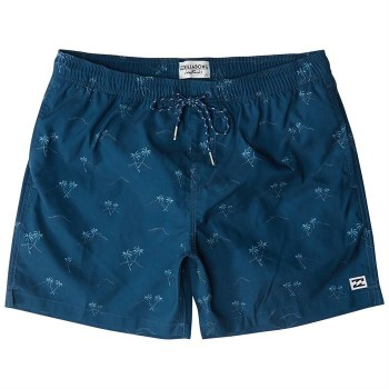 Boardshort Billabong Sunday LB