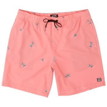 Boardshort Billabong Sundays Pigment LB