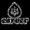 Carver Skate
